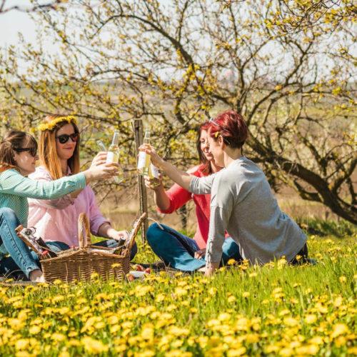 Nachmelené, piknik, léto, zábava
