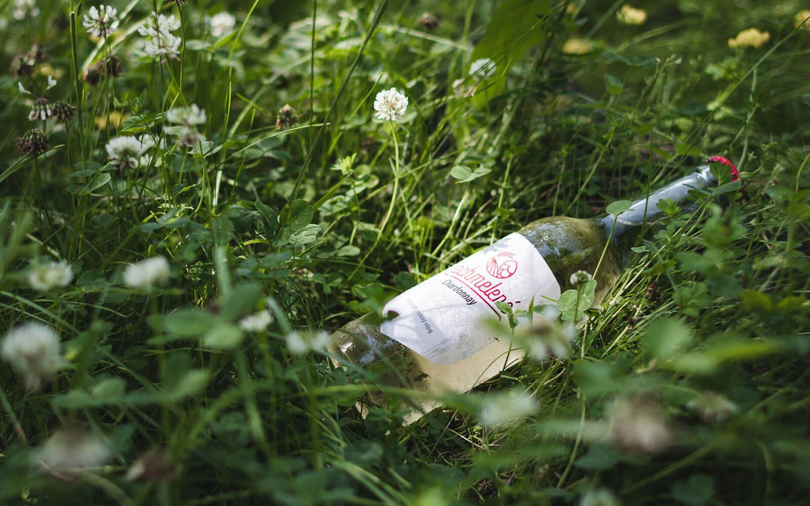 Foto láhev Nachmelené ležící v trávě